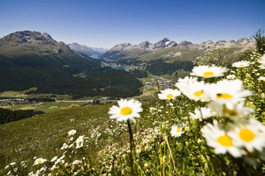 На фото: Весенний пейзаж в Верхнем Энгадине, Швейцария