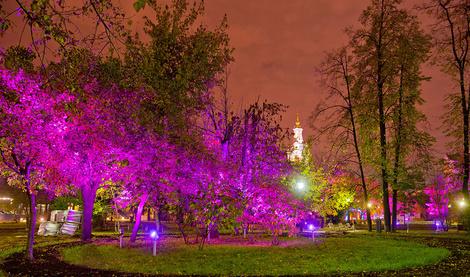«Октябрь в розовом цвете» от Philips | галерея [1] фото [3]