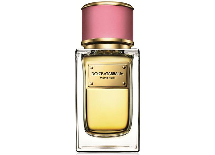 Dolce&Gabbana Velvet Rose