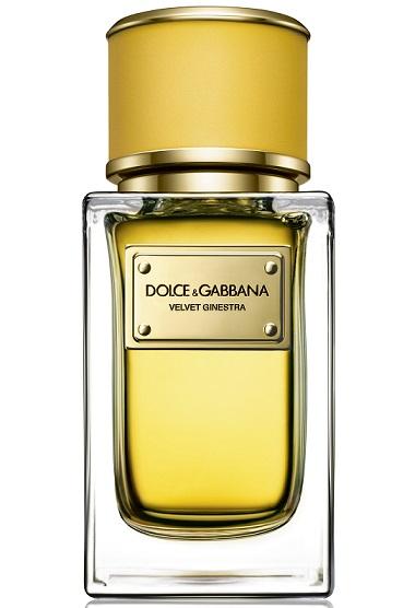 Velvet Ginestra от Dolce & Gabbana