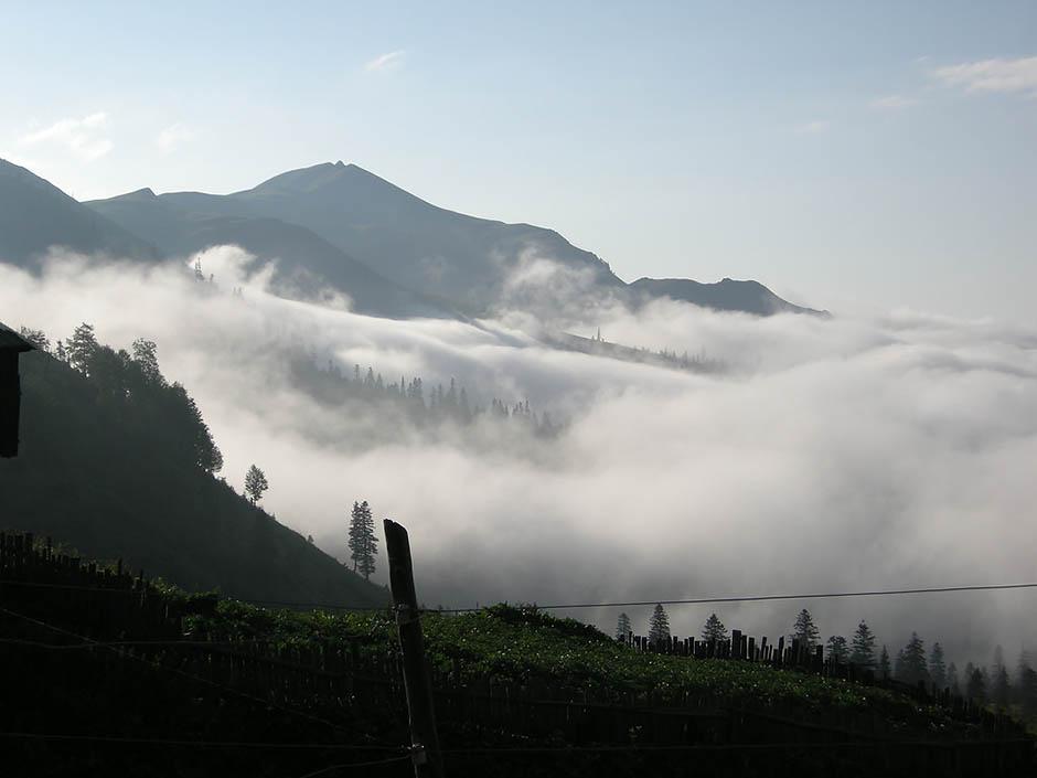 Сельский и эко туризм в Аджарии
