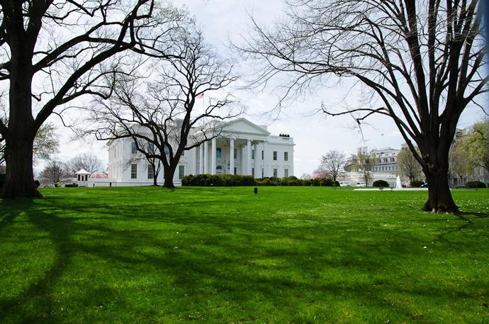 Вид из парка на Белый дом