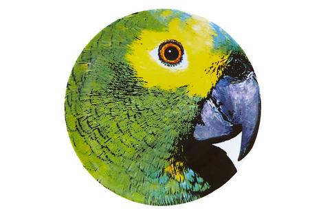Тарелка Parrot, Vista Alegre, магазины «Евродом», «Гледиз», «Твой Дом».