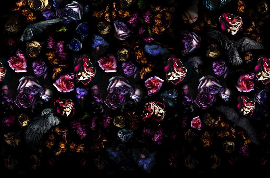 Справа Обои Flowers & Raven из коллекции 2014 года.