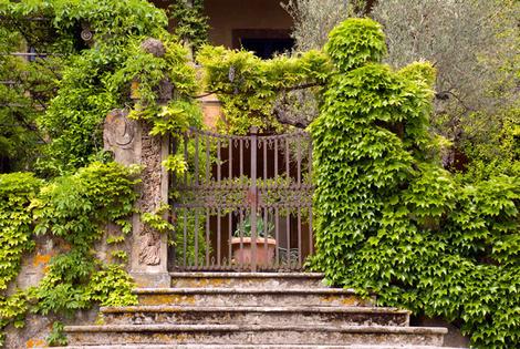 Дома звезд: вилла Стинга в Тоскане | галерея [1] фото [10]