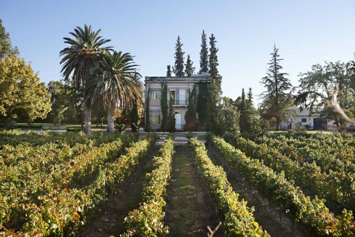 Открытие сезона: винный лекторий в Grand Cru