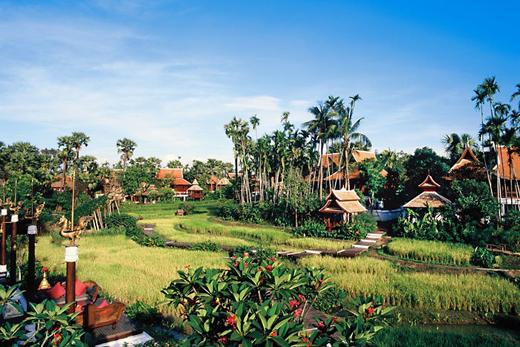 Вид на рисовые поля с террасы Mandarin Oriental Dhara Dhevi, Chiang Mai