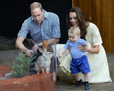 Итоги года 2014: лучшие фото Кейт Миддлтон и принца Уильяма | галерея [3] фото [4]