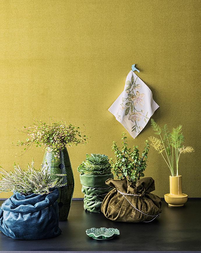 Модные цветы для дома и террасы
