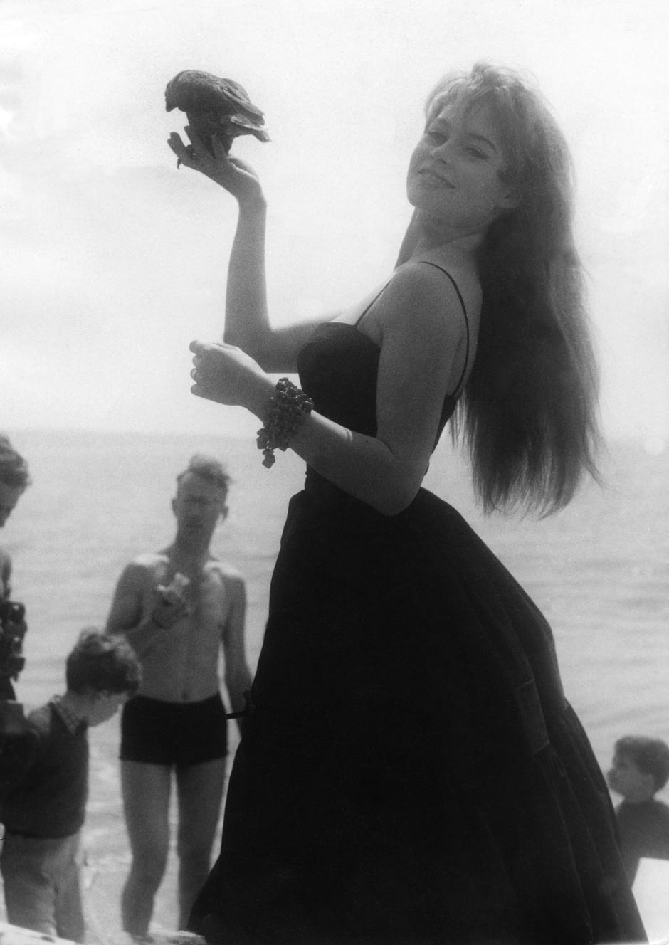 Брижит Бардо, Канны 1956