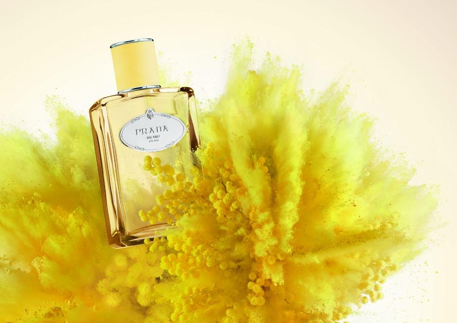 Все гениальное просто: новый аромат Mimosa от Prada