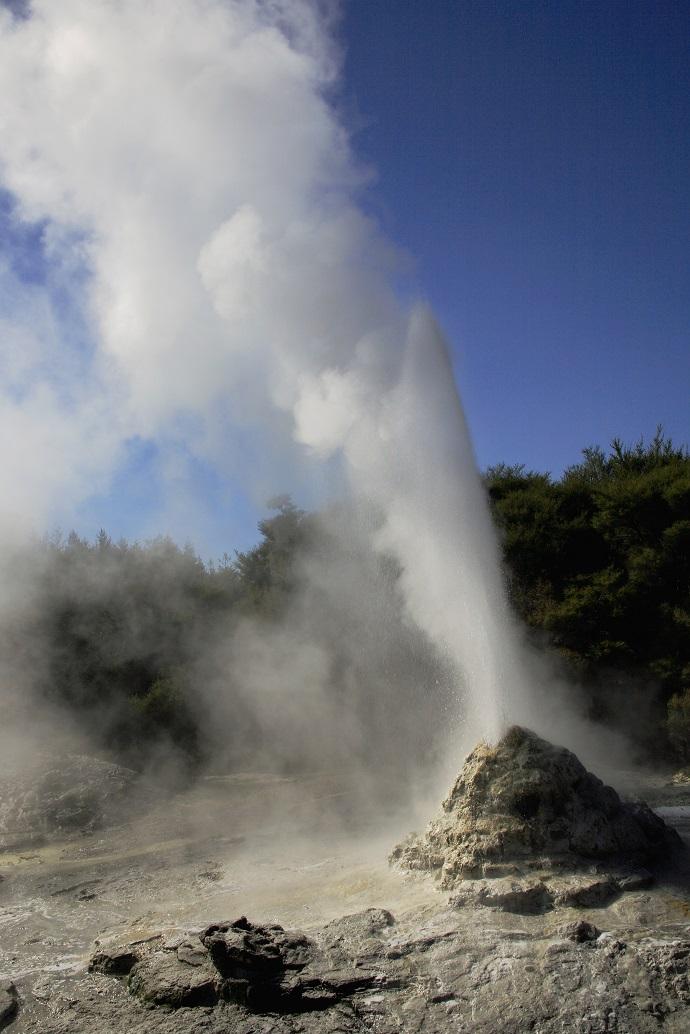 Гейзер Леди Нокс, Уаи-О-Тапу, Новая Зеландия