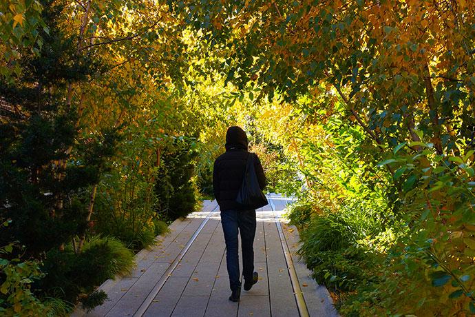 Дима Логинов – о «зеленой артерии» Нью-Йорка High Line