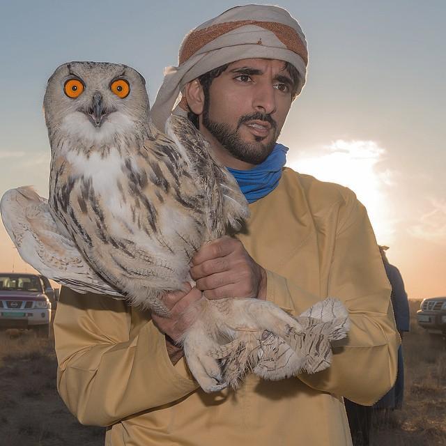 ОАЭ: принц Хамдан, 32 года
