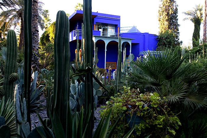 Сад Majorelle самые красивые сады мира фото