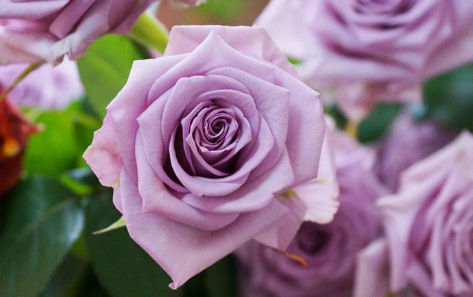 Модный букет: советы флориста 1