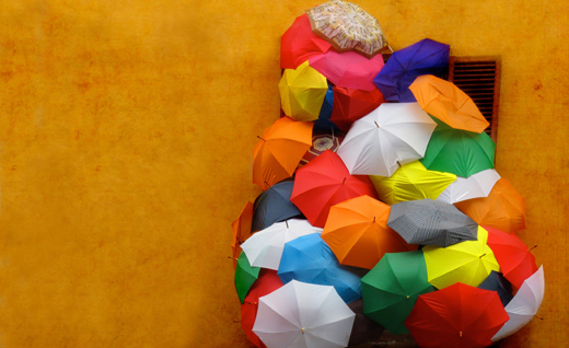 зонт 2013