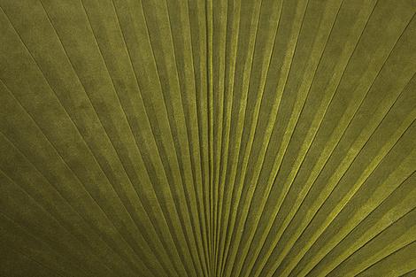 Дизайнер Микаэла Шляйпен представила новую коллекцию ковров | галерея [1] фото [1]