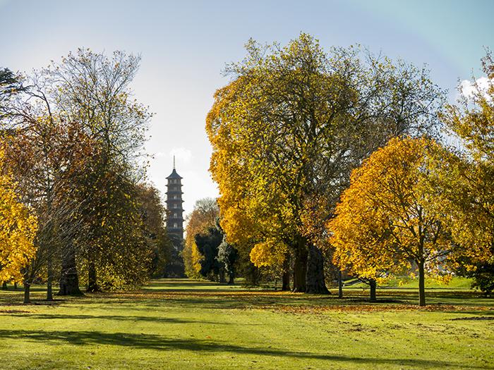 Kew Gardens самые красивые сады мира фото