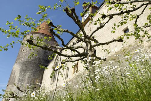 Фото: Швейцария, Савойский замок весной