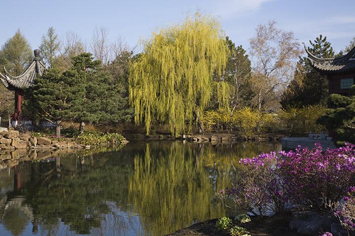 Jardin Botanique самые красивые сады мира фото