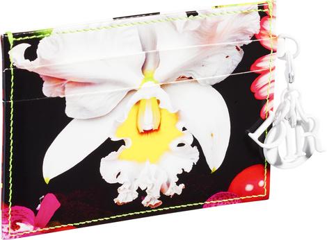 Dior выпустил лимитированную коллекцию аксессуаров с Марком Куинном | галерея [1] фото [4]